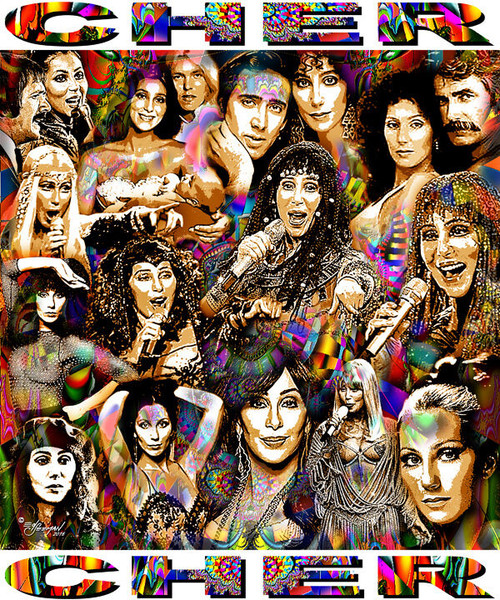 Cher Tribute T-Shirt or Poster Print by Ed Seeman