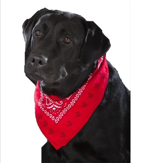 PET'S RED BANDANA