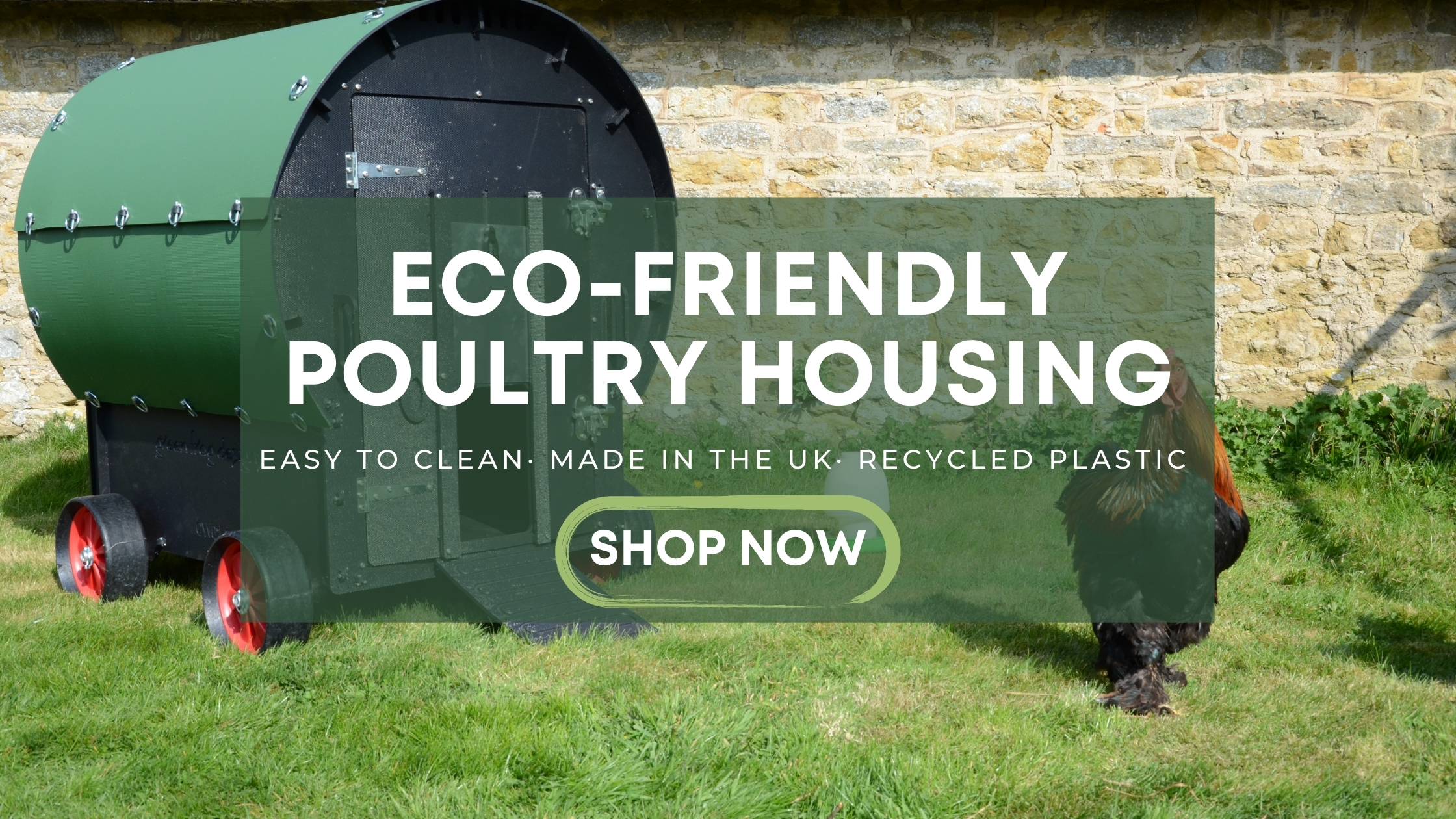 Green Frog Designs Eco-friendly Poultry Housing Chicken Coops