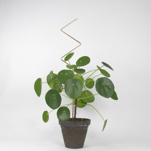 Botanopia Plant Stake ZigZag