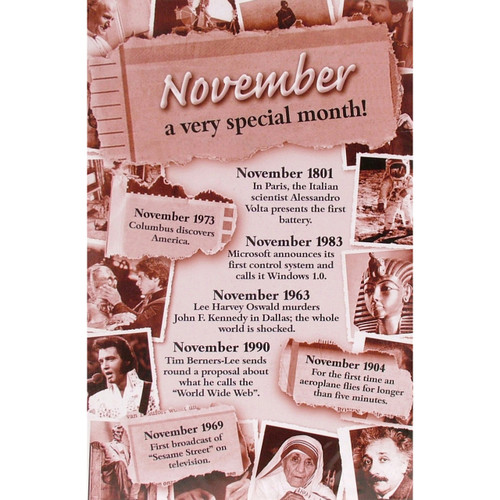 Chronicle Card - November Month