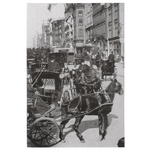 NYT Layflat Pocket Book Carriages on 5th Avenue {1897}