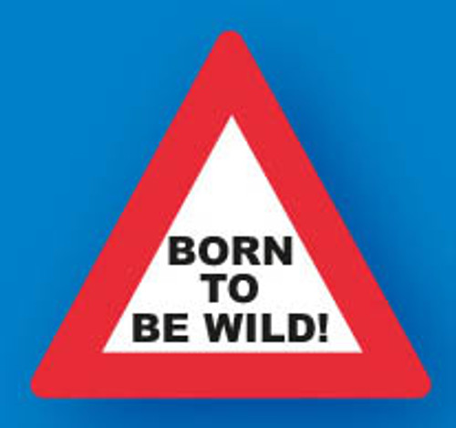 Keyring PVS Sign - Born To Be Wild!