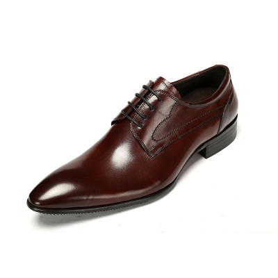 Mens pointed toe dress shoes brown