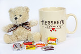 Hershey's and Reese's Mug and Plush Gift Sets