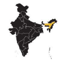 india-assam.jpg