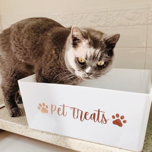 Pet Storage Box - Optional Paw prints