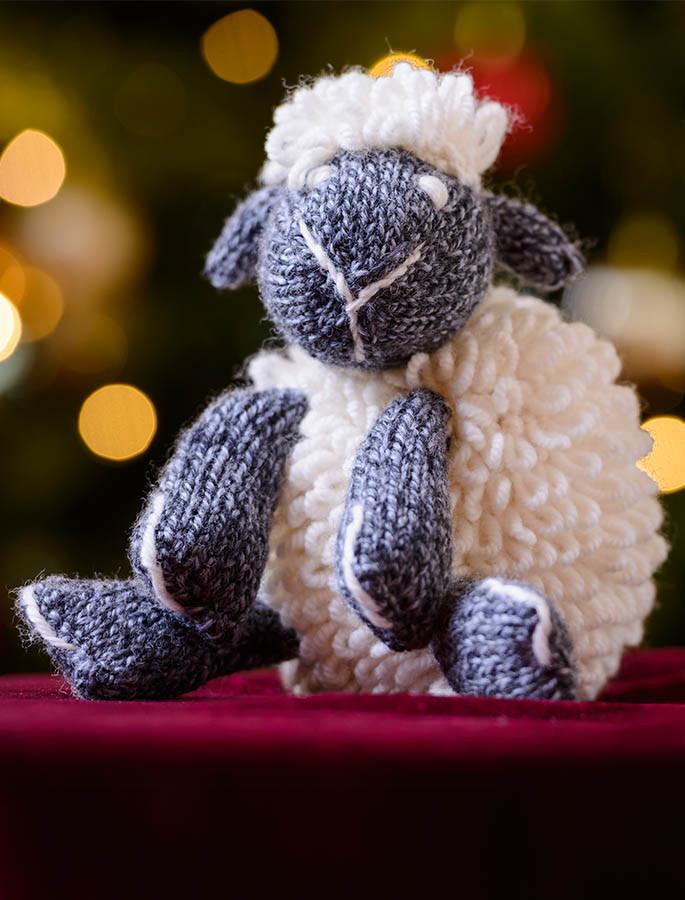 Aran Wool Sheep Teddy
