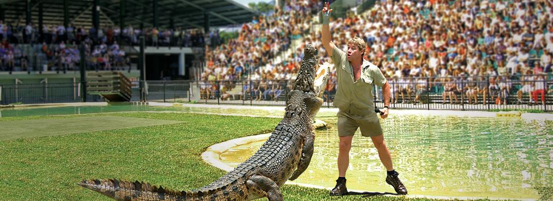 View The Crocodile Collection range