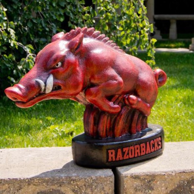Arkansas Razorbacks Mascot Garden Statue | Stonecasters | 2783HT