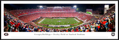 Georgia Bulldogs Stadium Panoramic Photo Standard Frame | Blakeway | UGA6F