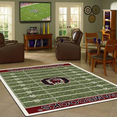 South Carolina Gamecocks Football Field Rug   Imperial   520-3036