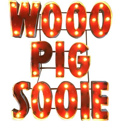 Arkansas Razorbacks Recycled Metal Wall Decor Woo Pig Illuminated |LRT SALES| WOOOPIGSOOIEWDLGT