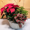 Santa's Garden (SCF18C16) by Savilles Country Florist.  Christmas Flower Arrangements, Centerpieces and Plant delivery to Orchard Park, NY and the surrounding area including same day delivery to Hamburg, West Seneca, East Aurora, Blasdell and Buffalo NY