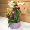 Easter Greetings - SCF18E21