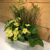 The Yellow Country Garden - Large by Savilles Country Florist.  Delivering plants throughout Buffalo and the surrounding suburbs.