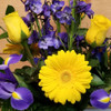 Out of the Blue (SCF19D34) by Savilles Country Florist.  Flower and Plant delivery to Orchard Park, NY and the surrounding area including same day delivery to Hamburg, West Seneca, East Aurora, Blasdell and Buffalo NY