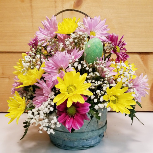 Easter Daisies (SCF18E12) by  Savilles Country Florist.  Flower and Plant delivery to Orchard Park, NY and the surrounding area including same day delivery to Hamburg, West Seneca, East Aurora, Blasdell and Buffalo NY