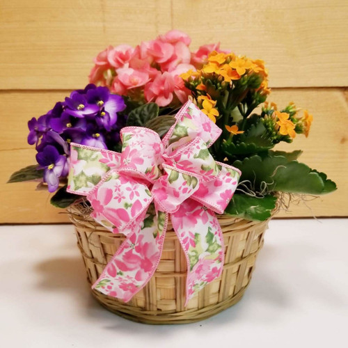Spring Delight (SCF19D21) by Savilles Country Florist.  Flower and Plant delivery to Orchard Park, NY and the surrounding area including same day delivery to Hamburg, West Seneca, East Aurora, Blasdell and Buffalo NY