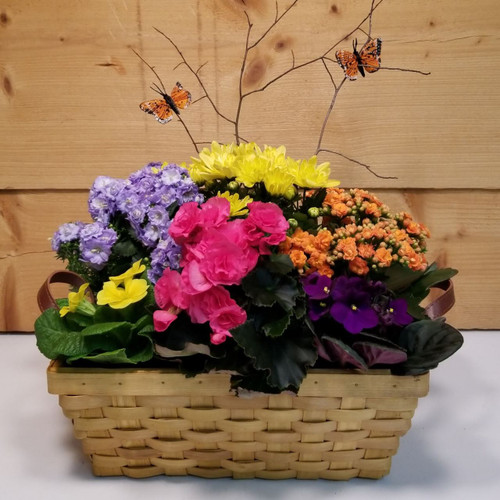 Spring Has Sprung (SCF19D28) by Savilles Country Florist.  Flower and Plant delivery to Orchard Park, NY and the surrounding area including same day delivery to Hamburg, West Seneca, East Aurora, Blasdell and Buffalo NY