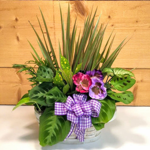 Purple Country Garden Medium (SCFDG05) by Savilles Country Florist.  Flower and Plant delivery to Orchard Park, NY and the surrounding area including same day delivery to Hamburg, West Seneca, East Aurora, Blasdell and Buffalo NY