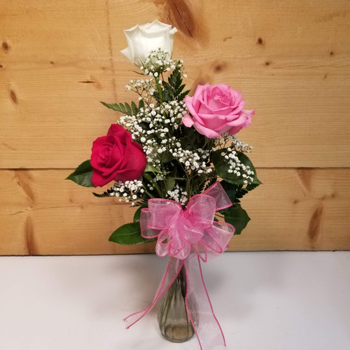 Trio of Expression (SCF19D56) by Savilles Country Florist.  Flower and Plant delivery to Orchard Park, NY and the surrounding area including same day delivery to Hamburg, West Seneca, East Aurora, Blasdell and Buffalo NY