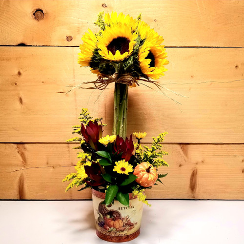 Sunflower Topiary (SCF19F09) by Savilles Country Florist.  Flower and Plant delivery to Orchard Park, NY and the surrounding area including same day delivery to Hamburg, West Seneca, East Aurora, Blasdell and Buffalo NY