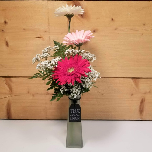 Message in a Bottle - Mixed Gerbs (SCF20D05) by Savilles Country Florist.  Flower and Plant delivery to Orchard Park, NY and the surrounding area including same day delivery to Hamburg, West Seneca, East Aurora, Blasdell and Buffalo NY