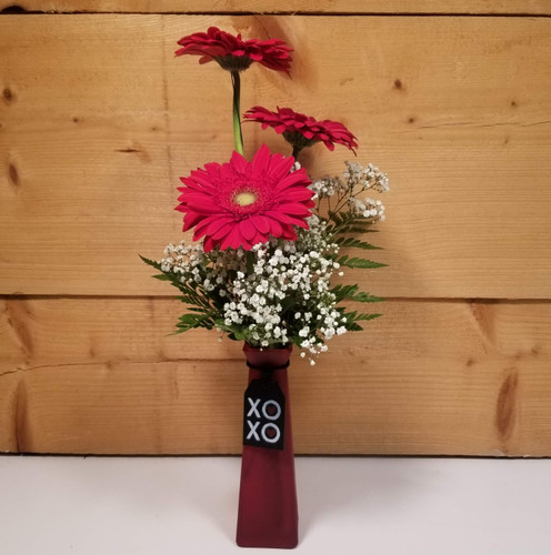 Message in a Bottle - Red Gerbs (SCF20D07) by Savilles Country Florist.  Flower and Plant delivery to Orchard Park, NY and the surrounding area including same day delivery to Hamburg, West Seneca, East Aurora, Blasdell and Buffalo NY