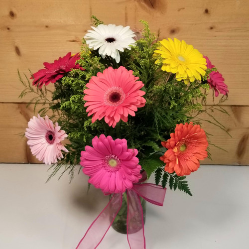 Weekly Special - 10 Gerbs Arranged (GERBSPECIAL) by Savilles Country Florist.  Flower and Plant delivery to Orchard Park, NY and the surrounding area including same day delivery to Hamburg, West Seneca, East Aurora, Blasdell and Buffalo NY