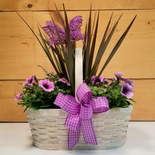 Mixed Garden Butterfly Basket (SCF20D42)