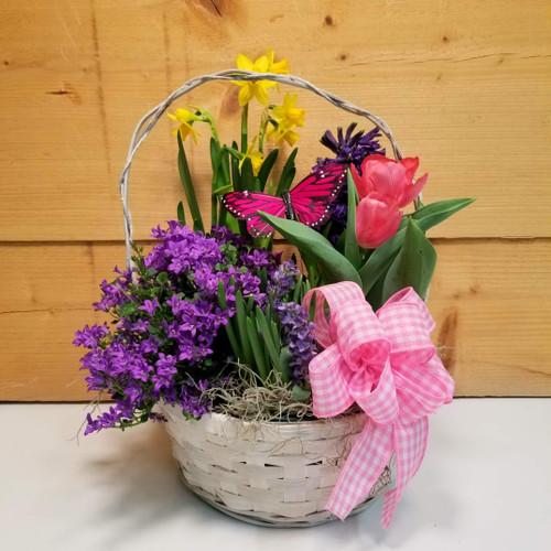 5 Bulb Plant Basket (SCF21D11)
