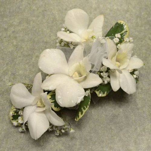 Corsage with 4 Dendrobium Orchids