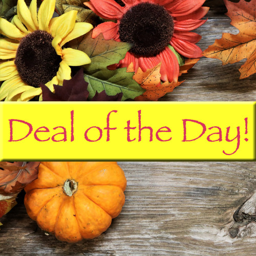 Deal of The Day (DEAL) by Savilles Country Florist.  Flower and Plant delivery to Orchard Park, NY and the surrounding area including same day delivery to Hamburg, West Seneca, East Aurora, Blasdell and Buffalo NY
