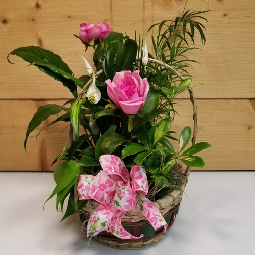 Garden of Melody (SCF19DG02) by Savilles Country Florist.  Flower and Plant delivery to Orchard Park, NY and the surrounding area including same day delivery to Hamburg, West Seneca, East Aurora, Blasdell and Buffalo NY