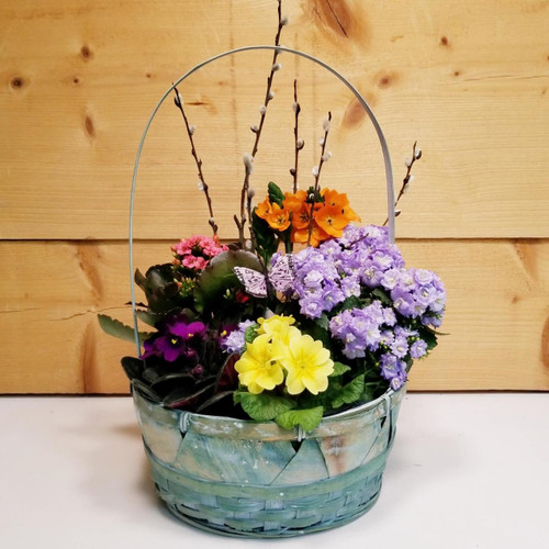 Vibrant Variety (SCF19D19) by Savilles Country Florist.  Flower and Plant delivery to Orchard Park, NY and the surrounding area including same day delivery to Hamburg, West Seneca, East Aurora, Blasdell and Buffalo NY