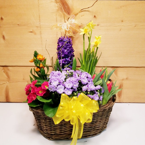 Full Bloom (SCF19D14) by Savilles Country Florist.  Flower and Plant delivery to Orchard Park, NY and the surrounding area including same day delivery to Hamburg, West Seneca, East Aurora, Blasdell and Buffalo NY