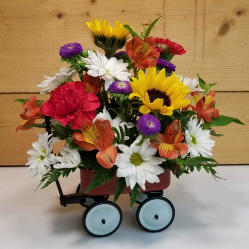Baby's First Wagon (SCF18BB01) Flower Delivery to Orchard Park, West Seneca, Hamburg, East Aurora, Buffalo, NY and the surrounding suburbs