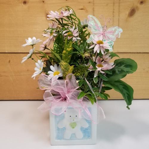 Darling Baby Planter (SCF18BB11) Savilles Country Florist, Orchard Park, NY