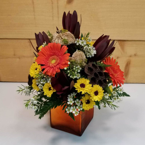 Harvest Spice (SCF18F14) by Savilles Country Florist.  Flower and Plant delivery to Orchard Park, NY and the surrounding area including same day delivery to Hamburg, West Seneca, East Aurora, Blasdell and Buffalo NY