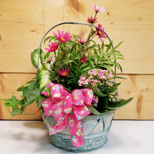 Motherly Love Garden (SCF19D38) by Savilles Country Florist.  Flower and Plant delivery to Orchard Park, NY and the surrounding area including same day delivery to Hamburg, West Seneca, East Aurora, Blasdell and Buffalo NY