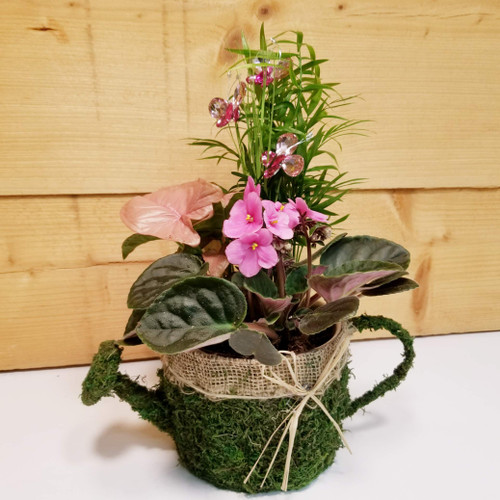 The Beauty Within (SCF19D41) by Savilles Country Florist.  Flower and Plant delivery to Orchard Park, NY and the surrounding area including same day delivery to Hamburg, West Seneca, East Aurora, Blasdell and Buffalo NY
