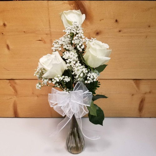 Purity & Innocence Trio (SCF19D52) by Savilles Country Florist.  Flower and Plant delivery to Orchard Park, NY and the surrounding area including same day delivery to Hamburg, West Seneca, East Aurora, Blasdell and Buffalo NY