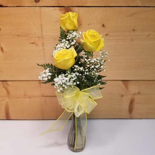 Friendship & Caring Trio (SCF19D54) by Savilles Country Florist.  Flower and Plant delivery to Orchard Park, NY and the surrounding area including same day delivery to Hamburg, West Seneca, East Aurora, Blasdell and Buffalo NY