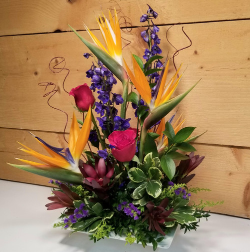 Paradise Awaits (SCF7028) by Savilles Country Florist.  Flower and Plant delivery to Orchard Park, NY and the surrounding area including same day delivery to Hamburg, West Seneca, East Aurora, Blasdell and Buffalo NY