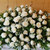 White Rose Premium Casket Spray (91233) by Savilles Country Florist.  Flower and Plant delivery to Orchard Park, NY and the surrounding area including same day delivery to Hamburg, West Seneca, East Aurora, Blasdell and Buffalo NY