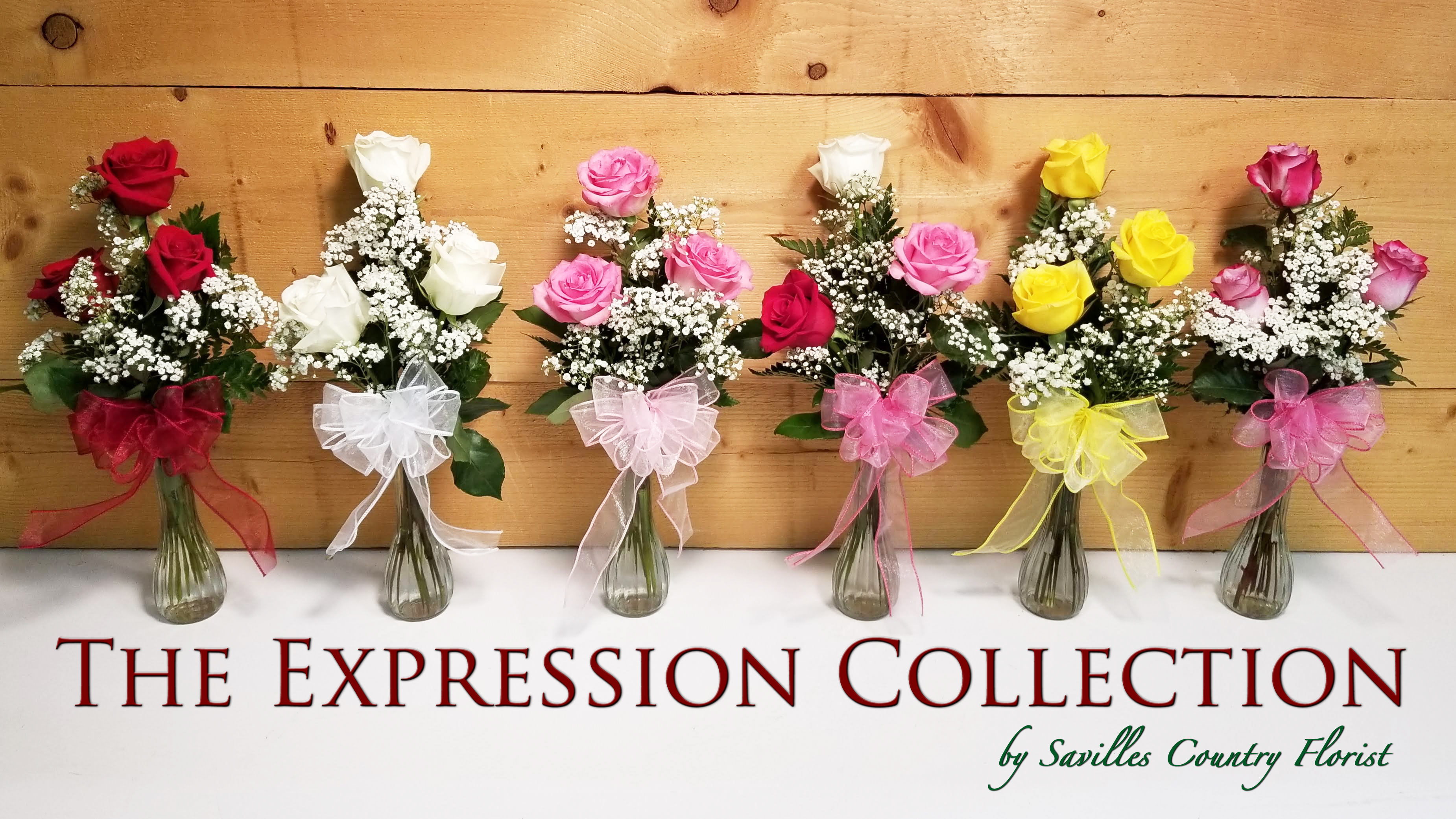 expression-collection-banner.jpg