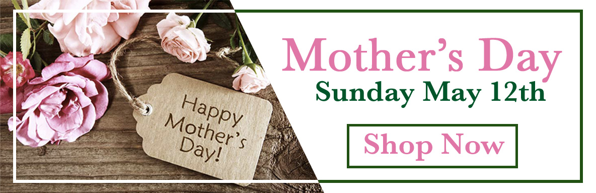 mothers-day-banner-1.jpg