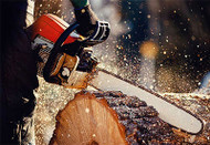 The Best Logging Boots   Expert Guide to Buying Logger Boots