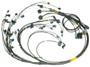 LSX premium engine wiring harness for Emtron KV8 ECU